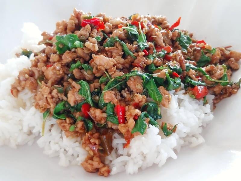 Carne di maiale tritata del basilico tailandese piccante fotografie stock