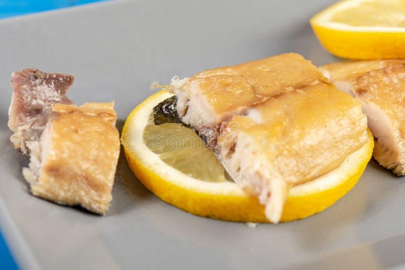 Carne di pesce secca dello sgombro con i limoni sul piatto immagine stock libera da diritti