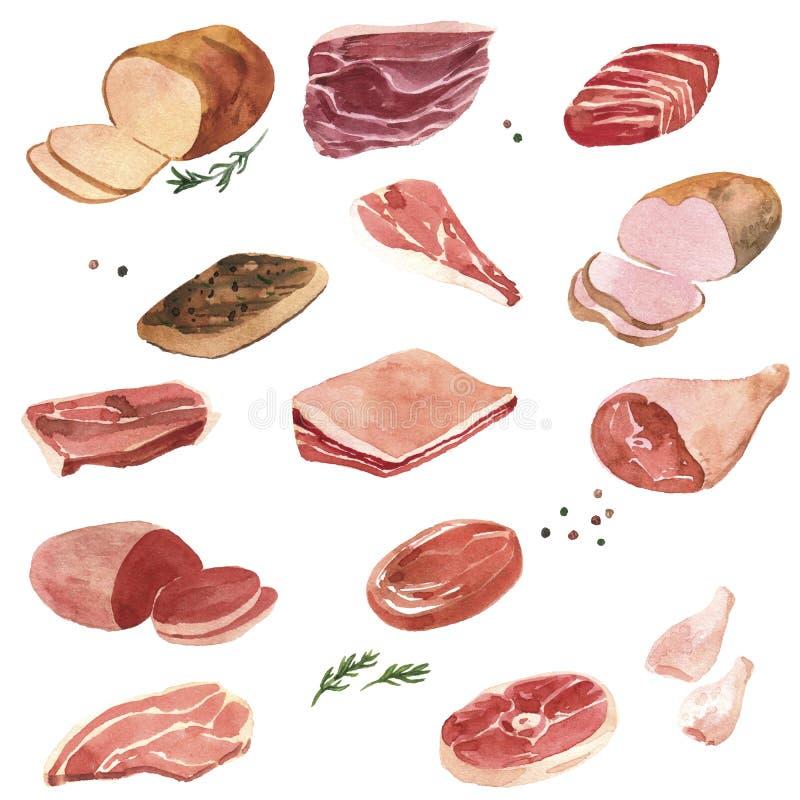 Carne do desenho da aquarela ilustração do vetor