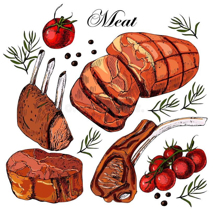 Carne Do Desenho Da M 227 O Ilustra 231 227 O Do Vetor Ilustra 231 227 O De