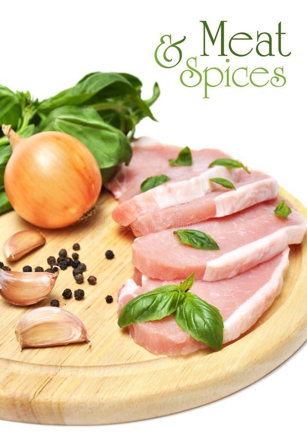 Carne e spezie fotografia stock libera da diritti