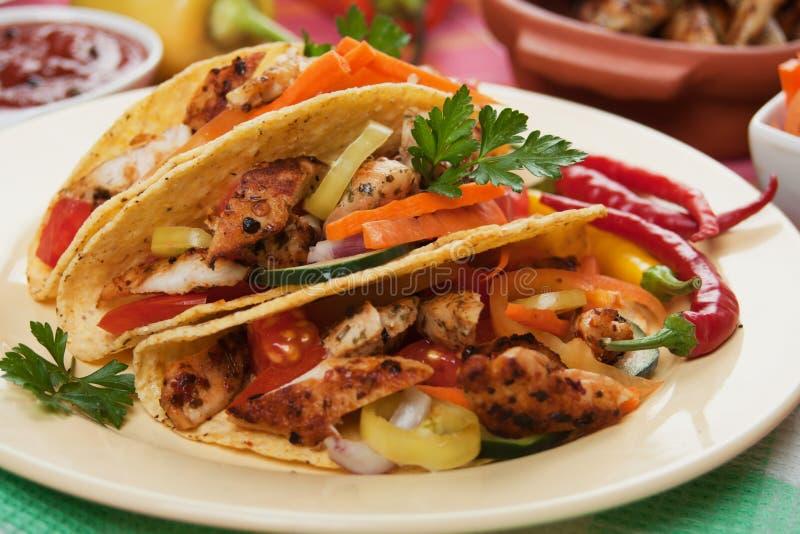 Carne grelhada da galinha em escudos do taco fotos de stock royalty free