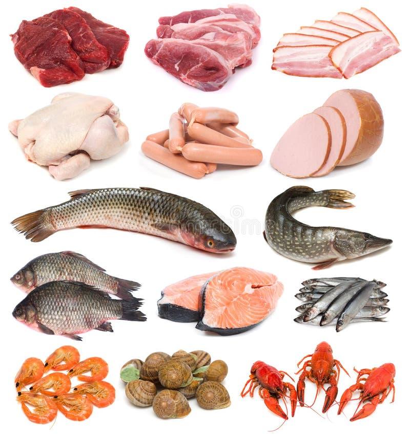 Carne, pescados y mariscos foto de archivo