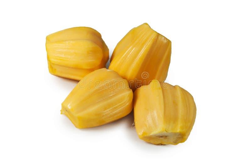 Carne quatro deliciosa fresca do jackfruit isolada no branco limpo imagens de stock