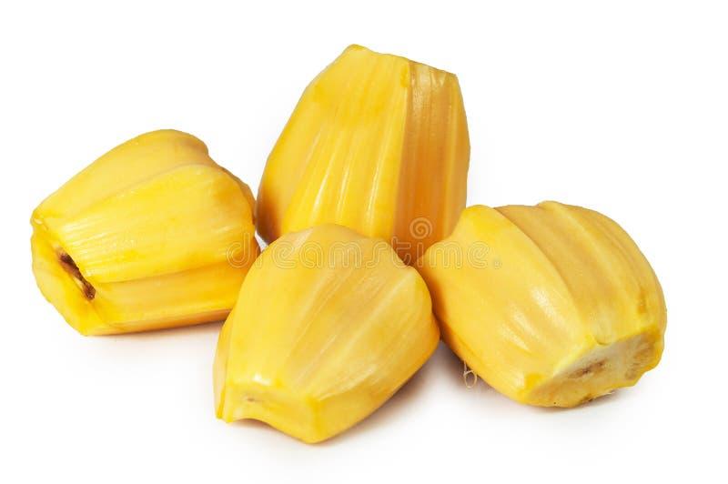Carne quatro deliciosa fresca do jackfruit isolada no branco limpo foto de stock