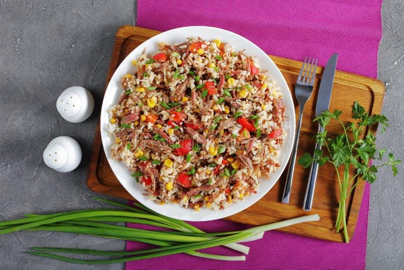 Carne suculenta misturada com o arroz na placa fotografia de stock
