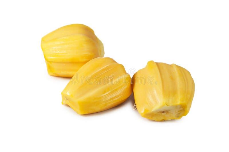 Carne três deliciosa fresca do jackfruit isolada no branco limpo imagem de stock royalty free