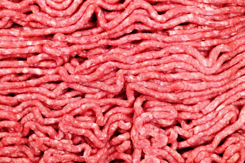 Carne tritata grezza immagini stock