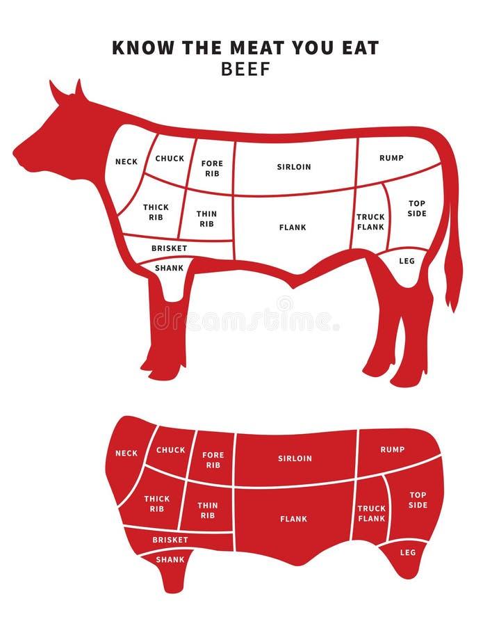 A carne vermelha corta o diagrama para o assado e o bife ilustração royalty free