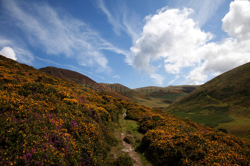 Download Carneddau Snowdonia stock photo. Image of trust, mountains - 23041462