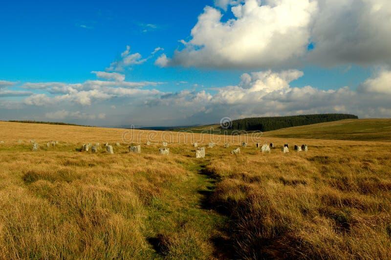 Carneros castrados grises, dartmoor Devon del Tor de Sittaford fotografía de archivo