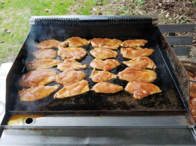Carnes da galinha no assado imagem de stock