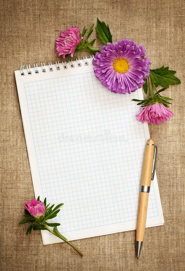 Carnet avec le stylo et les asters photo libre de droits