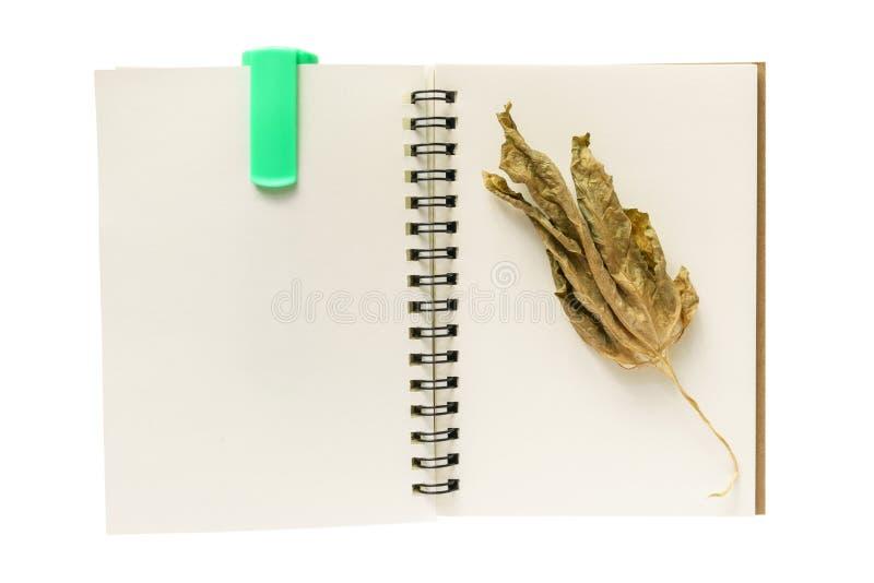 Carnet, feuille sèche et un stylo de marqueur photos libres de droits
