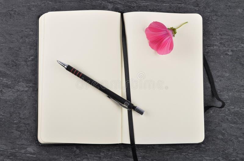 Carnet, stylo et mauve sur l'ardoise photos libres de droits