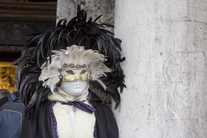 carnevale di venezia royaltyfri bild