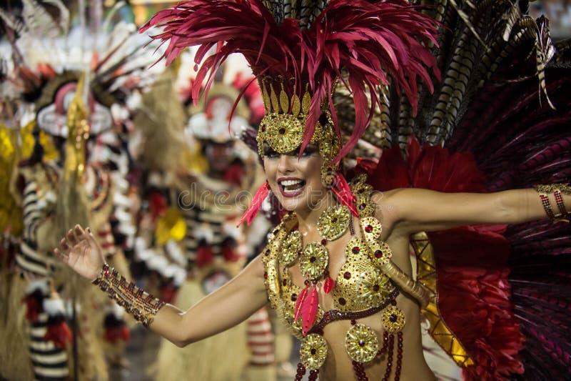 Carnevale 2014 - Rio de Janeiro immagini stock