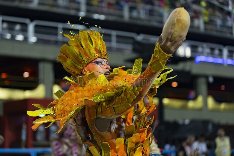 Carnevale 2019 - Unidos de Bangu fotografie stock libere da diritti