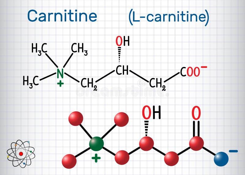 CarnitineL-carnitine molekyl Strukturell kemisk formel vektor illustrationer