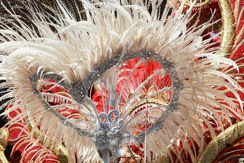 Carnival groups and costumed characters, parade through the streets of the city of Santa Cruz de Tenerife stock photos