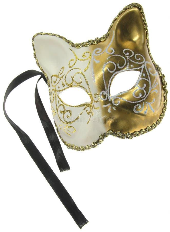 Free Carnival Mask Royalty Free Stock Photo - 8270565