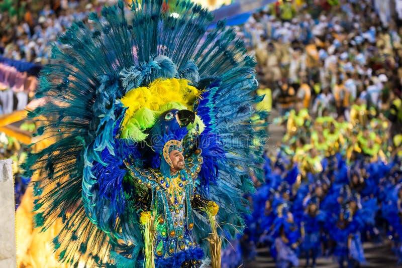 Carnival 2014 - Rio de Janeiro royalty free stock images