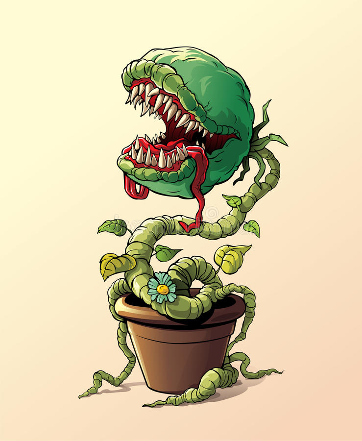 Free Carnivorous Plant Stock Images - 63302074