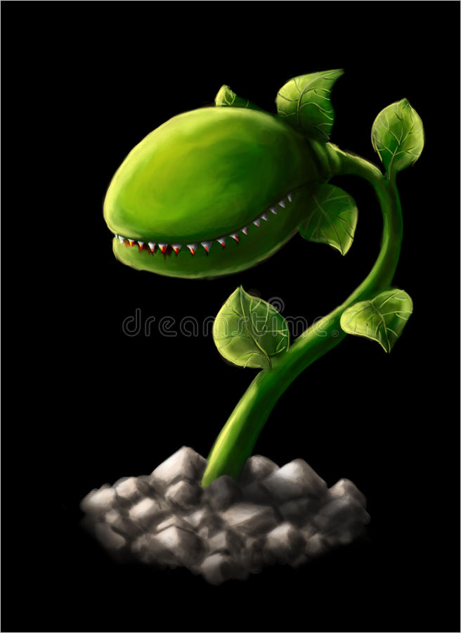 carnivorous växt 2 royaltyfri foto