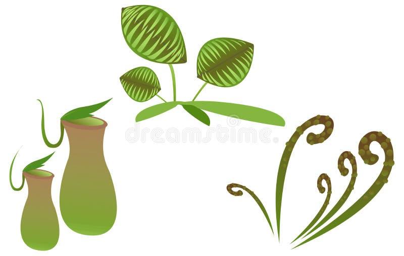 carnivorous växt stock illustrationer