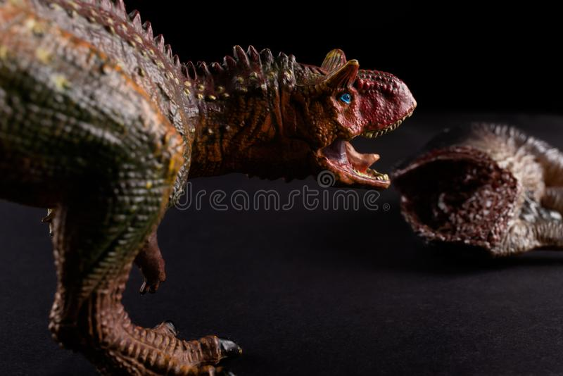 Carnotaurus μπροστά από το σώμα δεινοσαύρων στο σκοτεινό υπόβαθρο στοκ εικόνες
