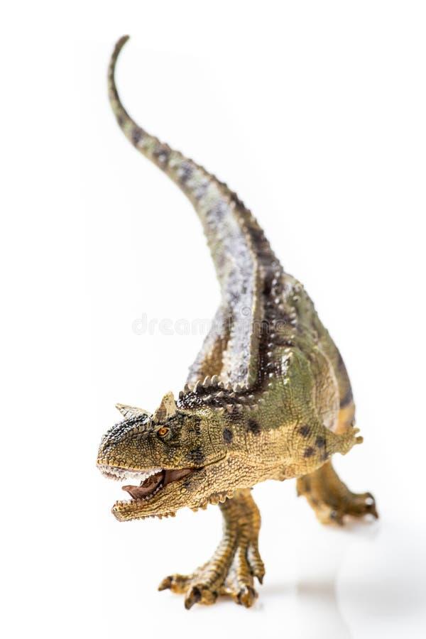 Carnotaurus, στο άσπρο υπόβαθρο στοκ εικόνα