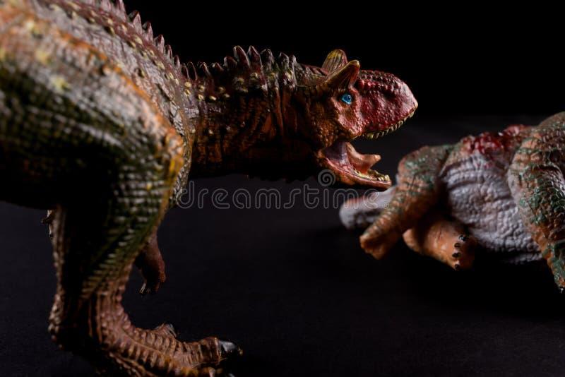 Carnotaurus na frente do corpo do stegosaurus no fundo escuro fotos de stock royalty free