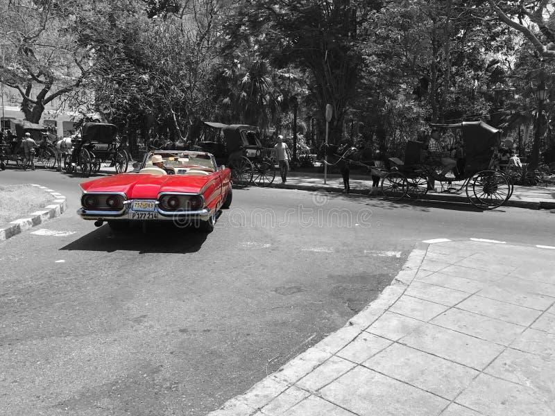 Caro Americano Engels Cuba stock afbeelding