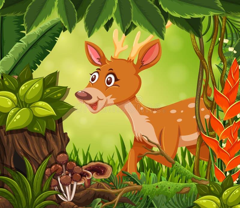 Caro feliz na selva ilustração stock
