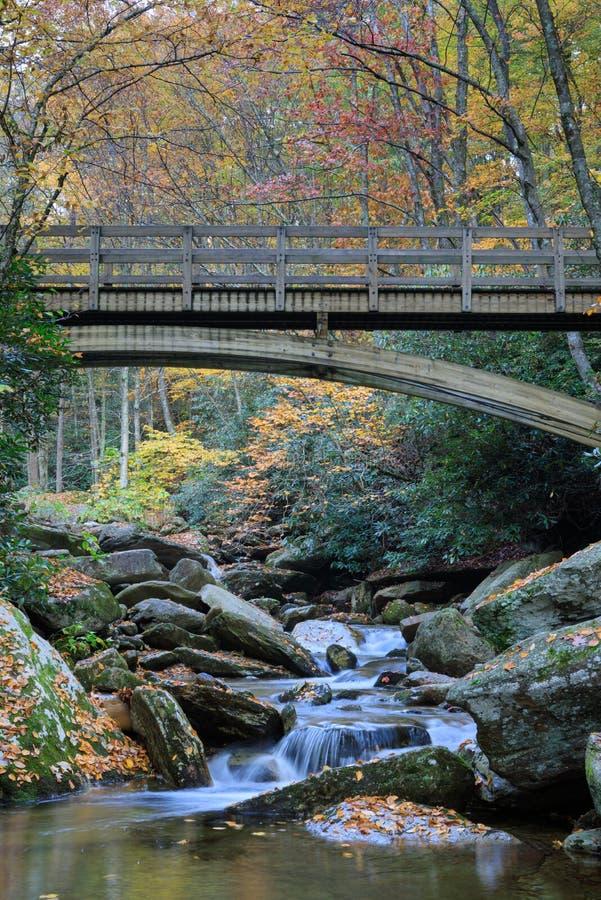 Carolina Boone Fork Creek Autumn Vertical norte imagens de stock