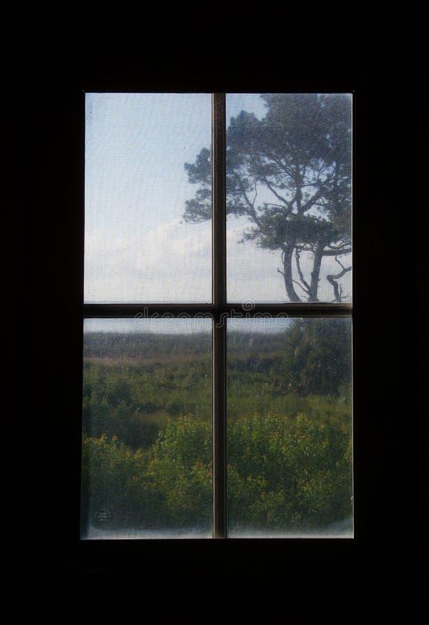 Carolina Dune Greenery Viewed door het Schermvenster stock fotografie