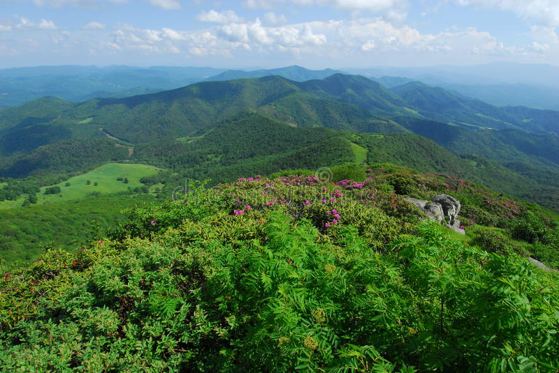 carolina grassy mountains north ridge royaltyfri bild