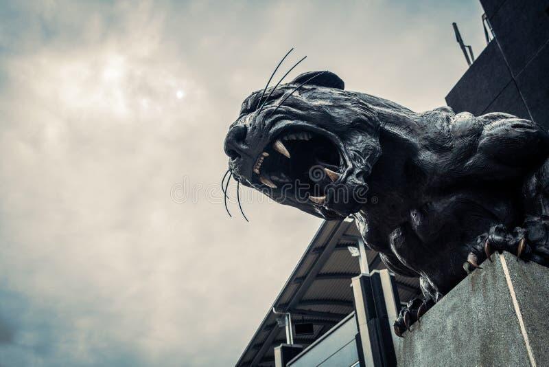 North Carolina Panthers football panther statue roaring fierce. Carolina Panthers black cat statue roaring and baring teeth in front of football stadium stock images