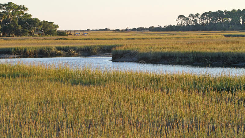 Carolina Salt Marsh du sud photographie stock