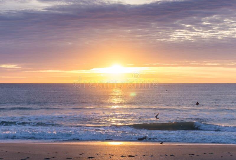 Carolina Surfer ad alba atlantica iniziale fotografia stock libera da diritti