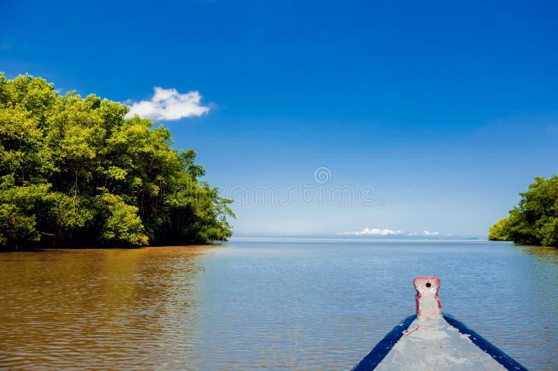 Caroni-Flussmündungsbootsfahrhohe See durch Mangroven stockfotos