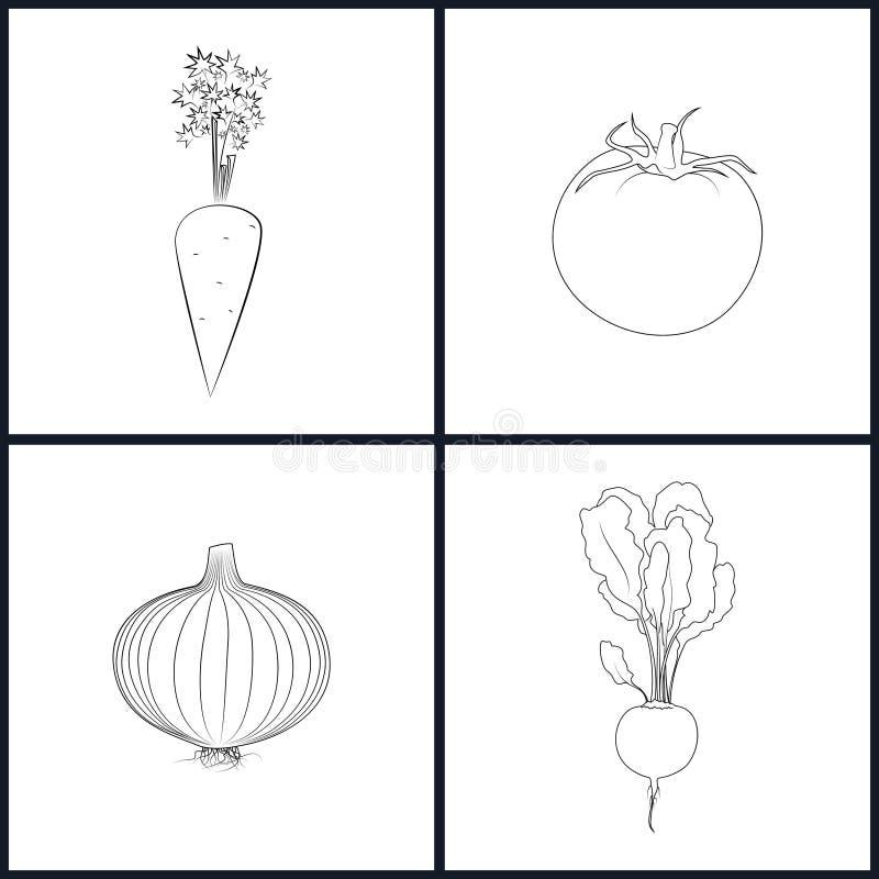 Carote delle icone, pomodori, cipolle, barbabietola illustrazione vettoriale