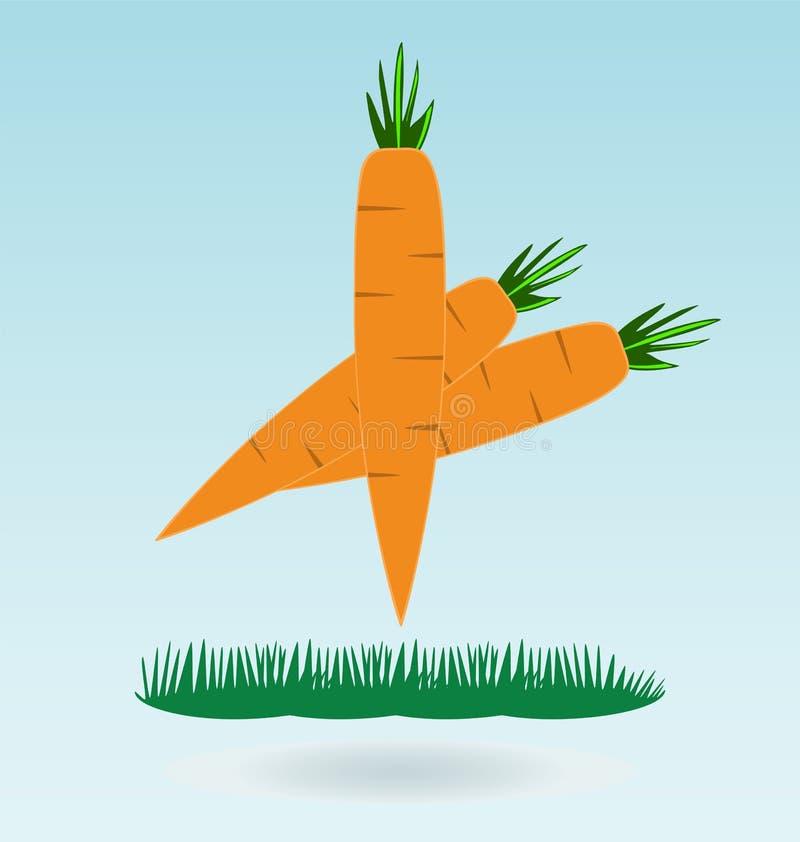 Carote organiche fresche dell'azienda agricola con le foglie royalty illustrazione gratis