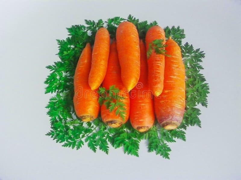Carotte encadrée par les feuilles vertes de carotte photographie stock libre de droits