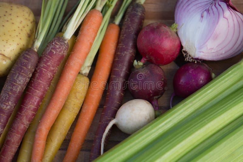 Carottes multicolores avec la pomme de terre, l'oignon, le céleri et les radis photo libre de droits