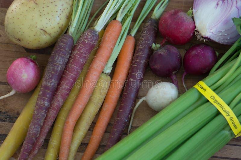 Carottes organiques multicolores avec la pomme de terre, l'oignon, le céleri et les radis photo stock