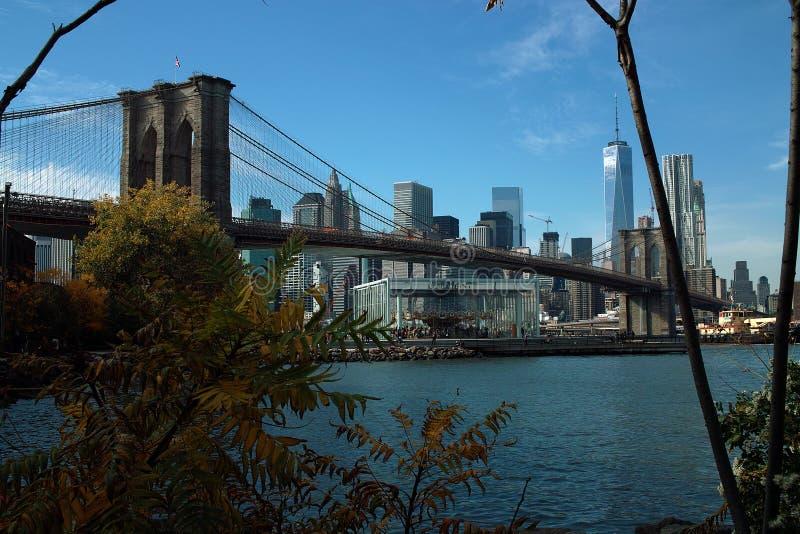 Carousel ` s Бруклинского моста и Джейна, Нью-Йорк США стоковые фото