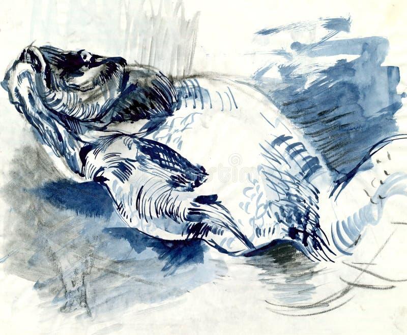 Download Carp stock illustration. Illustration of draft, antique - 24830148