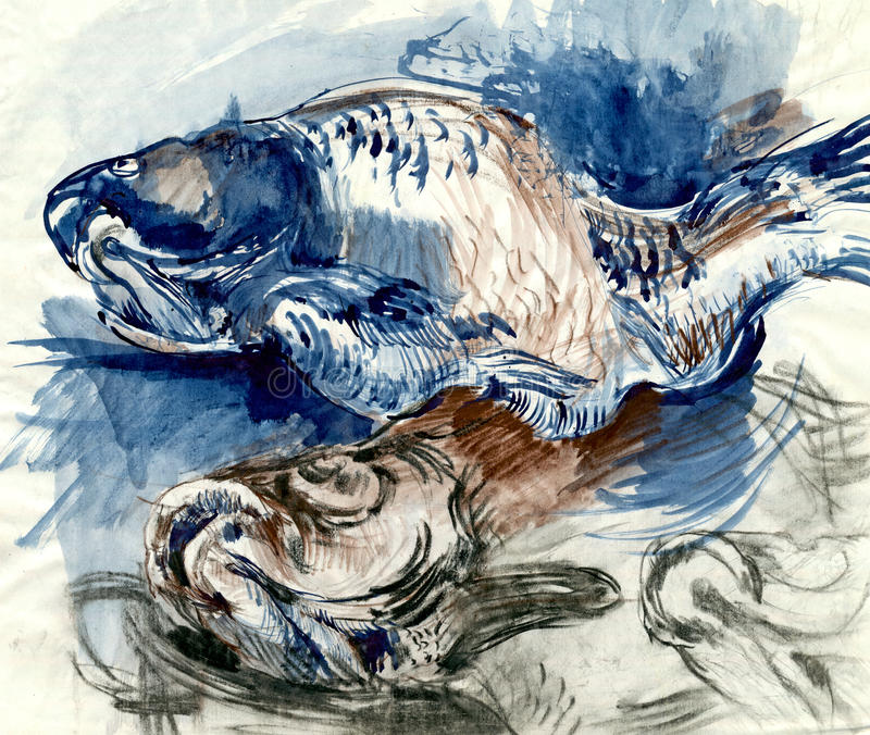 carp royaltyfri illustrationer