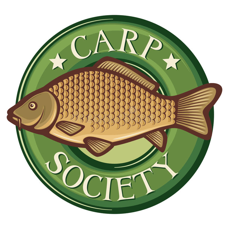 Download Carp stock vector. Illustration of ocean, food, catch - 25897783